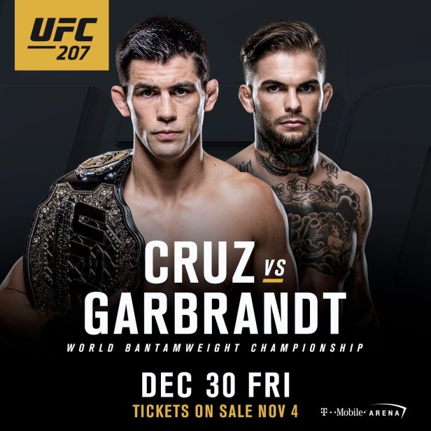 cruz-v-garbandt-ufc027-poster