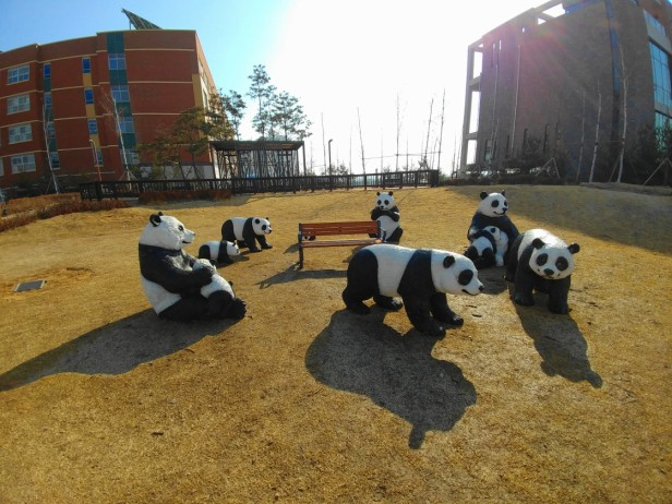 incheon-park-pandas-1