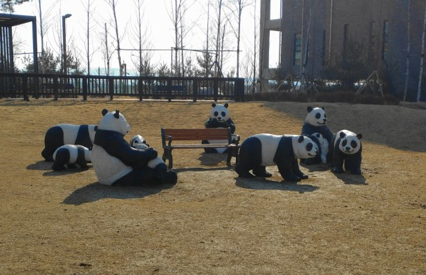 incheon-park-pandas