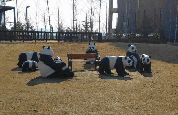 incheon-park-pandas